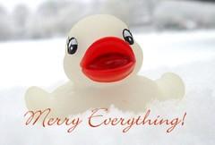Dear all!