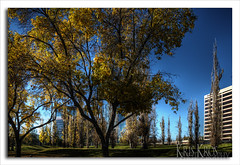 warner center (Kris Kros) Tags: ca blue sky tree buildings woodland photography high dynamic center hills business warner commercial range hdr kkg photomatix 5xp kkgallery