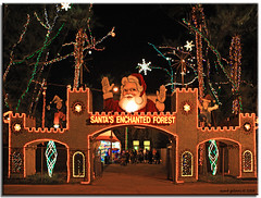 Santa's Enchanted Forest (iCamPix.Net) Tags: santa iso3200 explore christmasdecorations rides fav favourite canonef2470mmf28lusm mostviewed gameshows largestchristmastree santasenchantedforest lightdecorations mostwatched cannoneos1dsmarkiii icampixtechnologyleveli largestchristmasthemepark