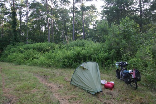 Wild camp near Osborn, west of Charleston, South Carolina.