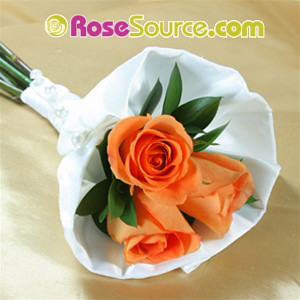 Orange roses Petite Hand Tied