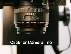 copy-camera-lens-closeup_2492c