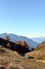 Panoramaweg (Heidadorf Visperterminen) Tags: berge zermatt matterhorn bergsee wandern heida wanderungen wein saasfee bietschhorn visperterminen bürchen beitschhorn heidadorf