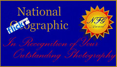 National Flickrgraphic Award