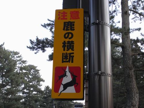 08-03-10-鹿のいる風景-02