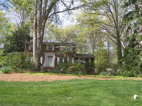 Greenwood Forest, Cary, NC 038