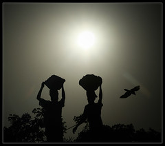 True Heroes [..Dhaka, Bangladesh..] (Catch the dream) Tags: sun hot workers afternoon basket pair bongo hero heat heroes dhaka crow moment bengal bangladesh bangla underexposed diligence bengali scorching bangladeshi industrious bangali catchthedream gettyimagesbangladeshq2
