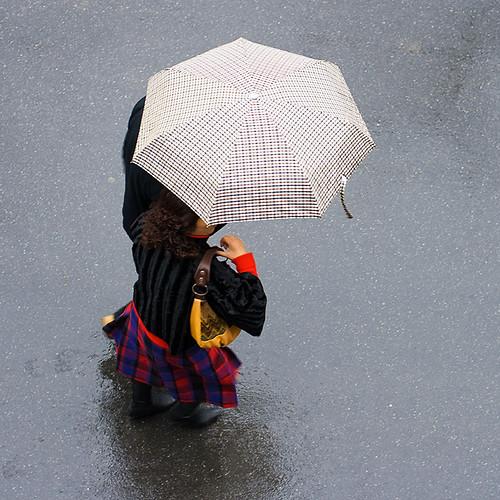 b0050 Rainy