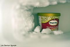 Berlinda (Luiz Henrique Assunção) Tags: ice gelo canon eos icecream macadamia haagendazs congelador 40d sorverte licassuncao