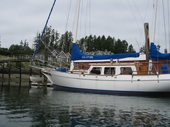 A Sea Tiger 42 (Castlenook (historical), Washington, United States) Photo