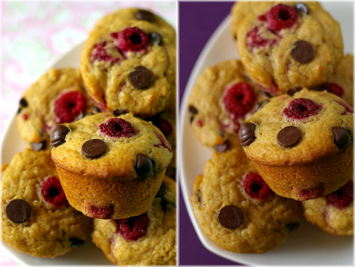 raspberry chocolate chips muffins