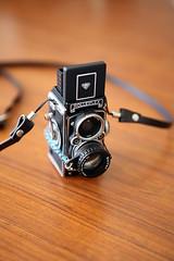 Rolleiflex MiniDigi+Vivitar 5X Close-Up Lens Teleobjectif 5X
