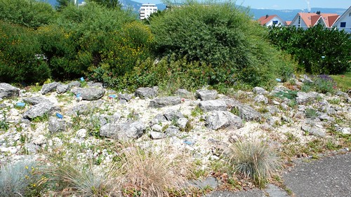 Rockery in Zuchwil Garden Center
