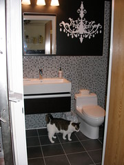 Baxter Explores (matilda deathstar) Tags: bathroomrenovation