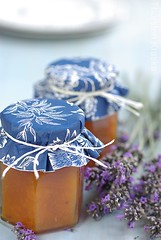 Apricot Jam with Lavender (1/2) (Thorsten (TK)) Tags: blue summer food orange cooking fruit breakfast herbs sweet lavender jar apricot jam fruity apricots foodphotography preserving foodpresentation foodstyling thorstenkraska germanfoodphotography