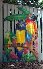 Entrance To Nancy Forrester's Secret Garden (Key West Wedding Photography) Tags: flowers flower gardens garden florida secret nancy bloom keywest cayobo blooms secrets secretgarden forrester helenbo secretgardens nancyssecretgarden namcyforresterssecretgarden nancyforrester