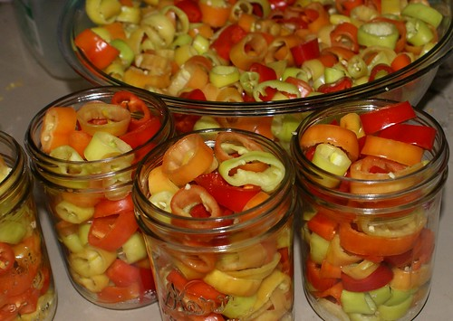 pack pepper for pickling