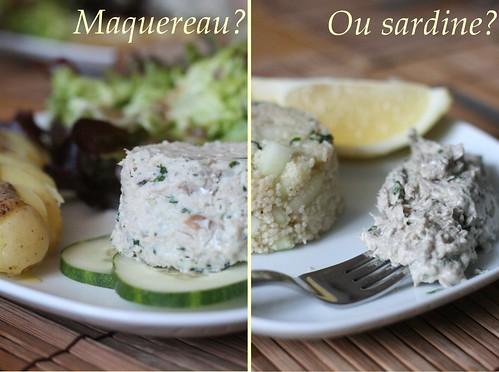 Maquereau ou sardine