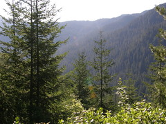 Views  on way to Shriners peak summit.