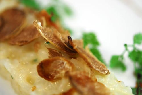 White Truffle Risotto - DSC_0414