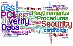 Information Security Wordle: PCI DSS v1.2 (try #2)
