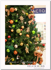 Christmas Tree in Shopping Mall (Kelvin Wong (Away)) Tags: christmas xmas light holiday beauty festival canon wonderful season happy star amazing dof superb joy balls australia christmastree depthoffield shoppingmall stunning excellent adelaide joyful southaustralia greeting rundlemall seasonsgreetings interestiness canoneos400d canoneosrebelxti decoraction canoneoskissx dollcute kelvinwong piscesromance
