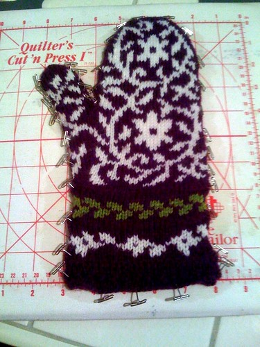 Blocking Bird in Hand Mitten