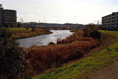 矢上川 - 鶴見川へ