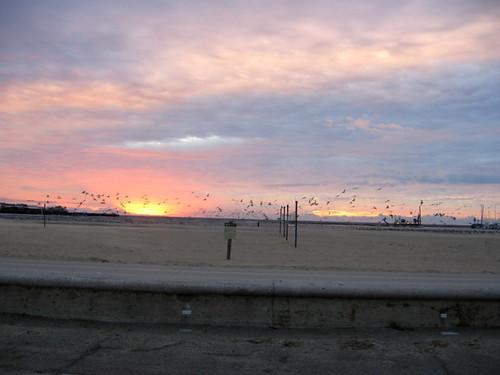 Christmas Eve Morning West Beach