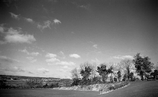 Illford Pan F+ 50 35mm in Rodinal 1+50 - 11 minutes