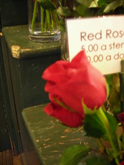Red Rose (alodi) Tags: seattle washington unitedstates pikeplacemarket redroses twoofwands eyefi thehierophant queenofpentacles tarotcardsscavengerhunt