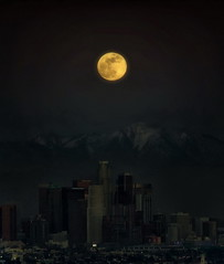 Wolf Moon over Los Angeles (Daryl's World TTL) Tags: losangeles luna fullmoon kennethhahnpark wolfmoon