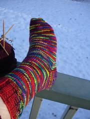 Mardi Gras Jitterbug sock