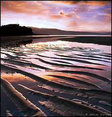 what a wonderful world (Daniel Murray (southnz)) Tags: sunset newzealand sky cloud reflection beach landscape golden evening bay coast sand scenery ripple nz southisland abel tasman ligar southnz