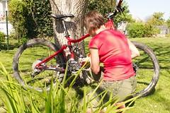 Jarní údržba kola