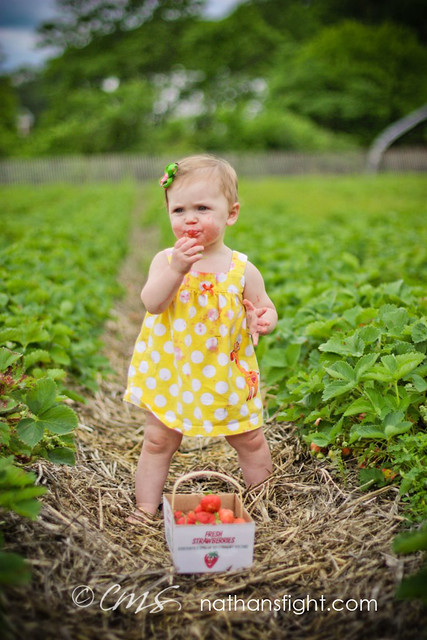 strawberry picking 2011 -_-9