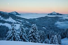 Samons 1600 (74) (Mikl - Concept-Photo.fr (CRBR)) Tags: ski night montagne sunrise soleil clear neige brouillard sapin brume pwwinter