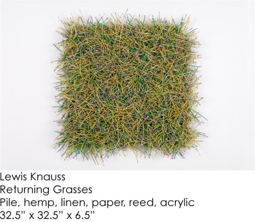 Lewis Knauss : Returning Grasses