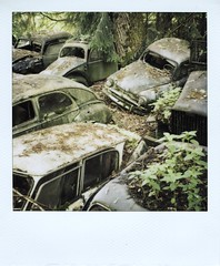 1 (Polaroid) (So gesehen.) Tags: wood old nature car polaroid schweiz switzerland automobile decay lofi scanned polaroidlandcamera autofriedhof autograveyard cardump polaroid600film kantonbern polaroid2000 kaufdorf sx70moddedfor600 historischerautofriedhof fehicle panpola