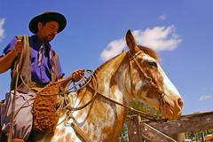 Arreglando o lao (Eduardo Amorim) Tags: brazil horses horse southamerica brasil criollo caballo cheval caballos lazo cavalos pferde cavalli cavallo cavalo gauchos pferd riograndedosul pampa hest hevonen campanha brsil chevaux gaucho  lasso amricadosul lao bag fronteira hst gacho  amriquedusud  gachos  sudamrica suramrica amricadelsur  sdamerika crioulo caballoscriollos criollos   americadelsud  crioulos cavalocrioulo americameridionale caballocriollo campeiros campeiro eduardoamorim cavaloscrioulos