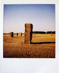 Giganti di paglia (Ilaria ) Tags: tramonto toycamera campagna cielo ferrara polaroid600 grano campi d40 guerrieri toycamerafotografiaanalogicaitalia polaroidsupercolor nomegliotombemegaliticheceltiche