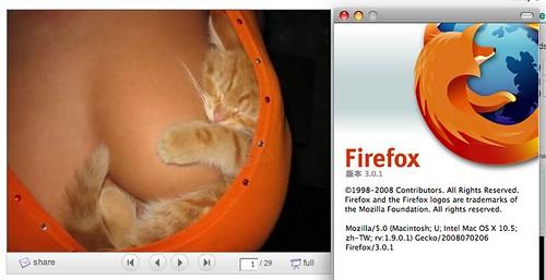 這也是火狐? (by tenz1225)