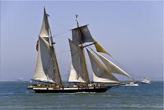 LYNX (RCAGUIAT / Rodel Caguiat) Tags: ocean sea boat san ship sfo pirates fran bow anchor bayarea sail mast stern forward aft festivalofsails