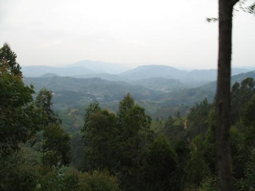 Rwanda_DRC_July08 059