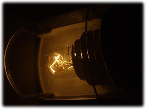 Lamp in fridge - closed door