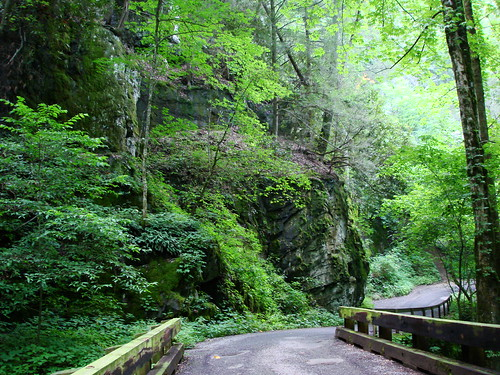 Roaring Fork Motor Trail
