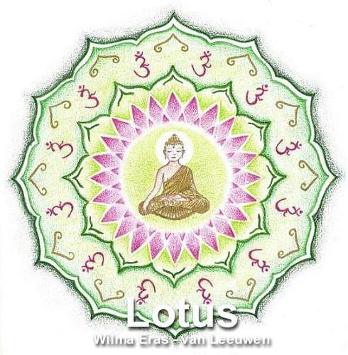 4. Lotus