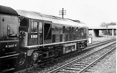 Last train, Rugby to Peterborough... (rugd1022) Tags: 2 last train rugby 1966 class type 24 peterborough sulzer lilbourne d5036