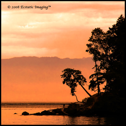 The Pointe at East Sooke Park