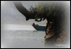 sueños de infancia (MOYOLEHUANI) Tags: nepal sueños pokhara niñez